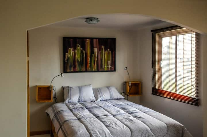 H705: Cozy studio in Polanco