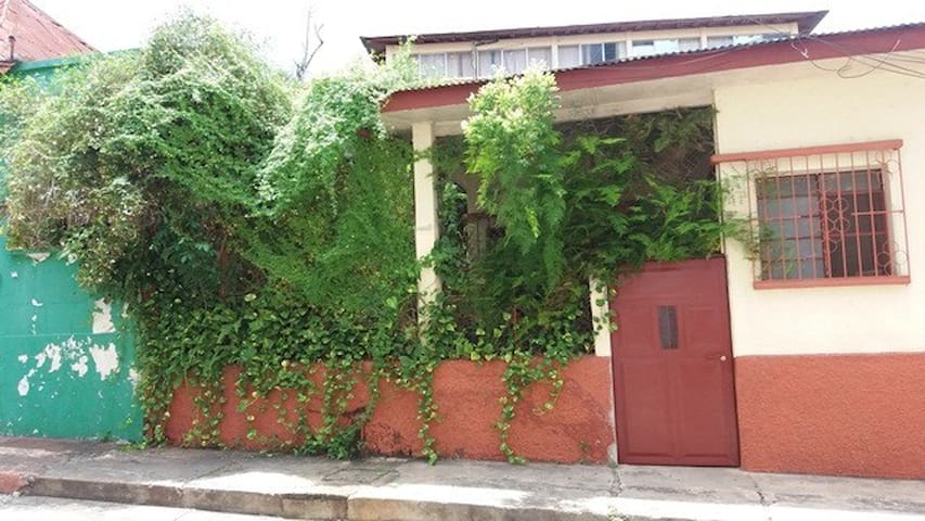 Garden room in the heart of Flores