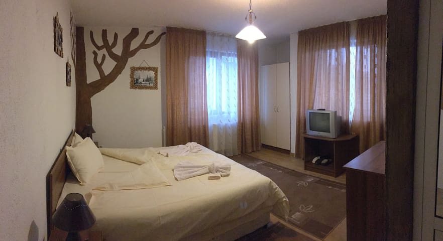 Bansko Cosy Guesthouse - Bansko - Gjestehus