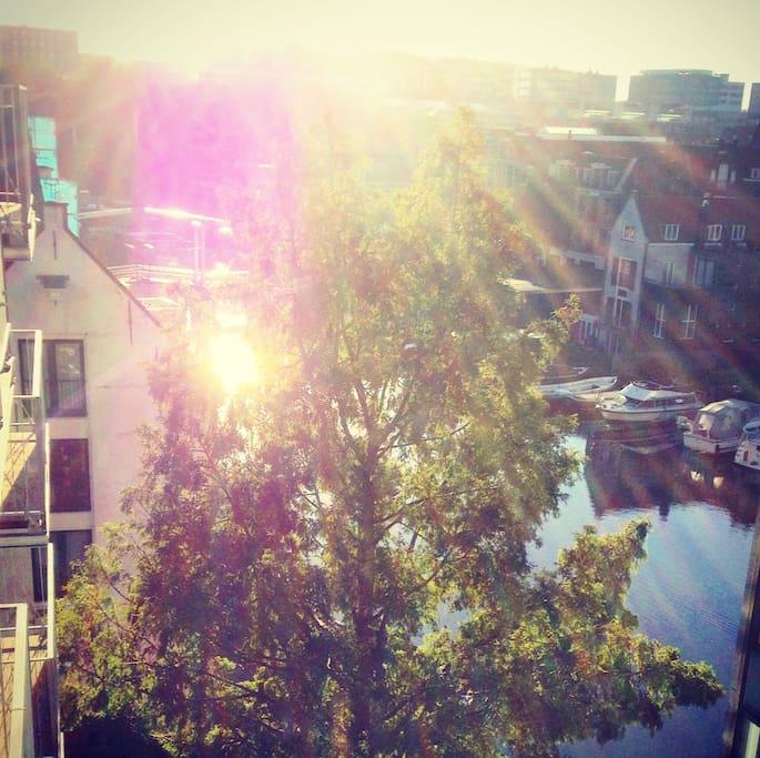 Appartamenti Affitto Amsterdam Centro