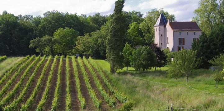 Manoir au cœur des vignes