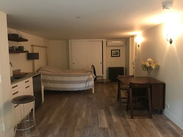 Kitchenette, dining table, bed, closet & bath to the rear