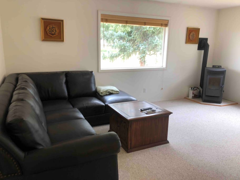 spacious leather couch and toasty pellet stove heater