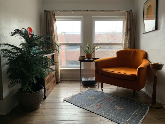 Cozy Mid Century Downtown Apartment
