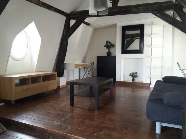 Appartement Hyper centre (Forum) - Reims - Daire