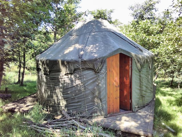 Alden Woodland Yurt