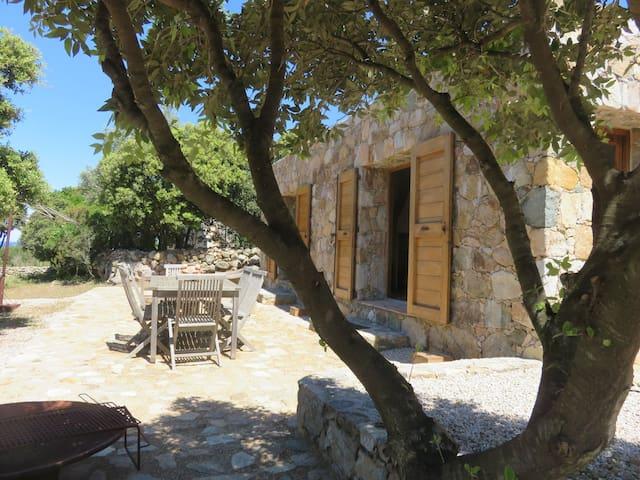 Logement le plus atypique de Calvi - Calvi - House