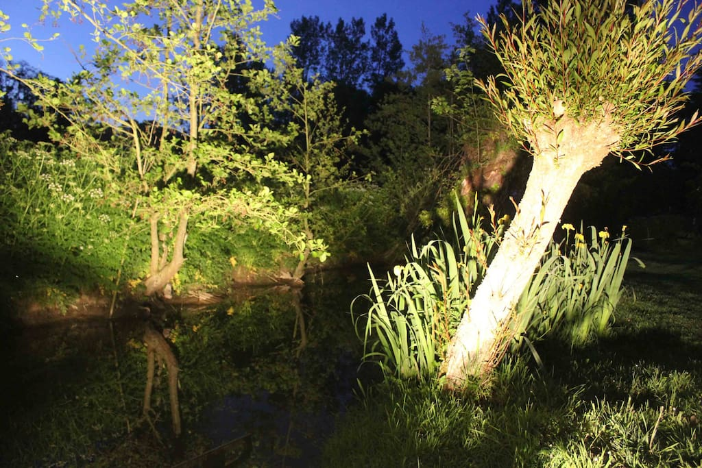 La rivière qui borde la propriété éclairée la nuit