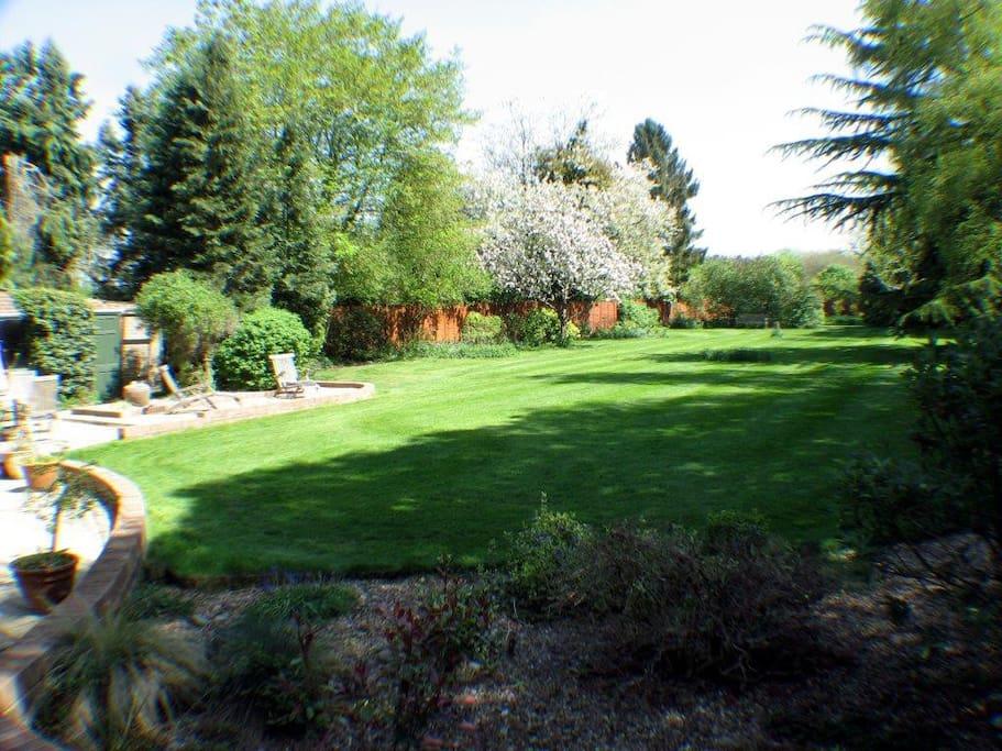 Lovely large garden.