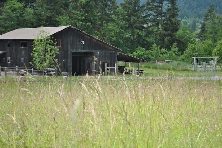 Free Horse Farm Stay - Friday Harbor