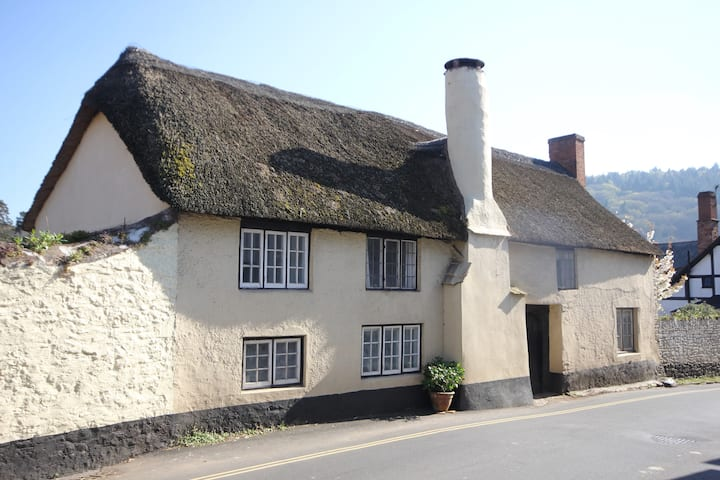 Cosy 3-bdr thatched cottage in medieval Dunster