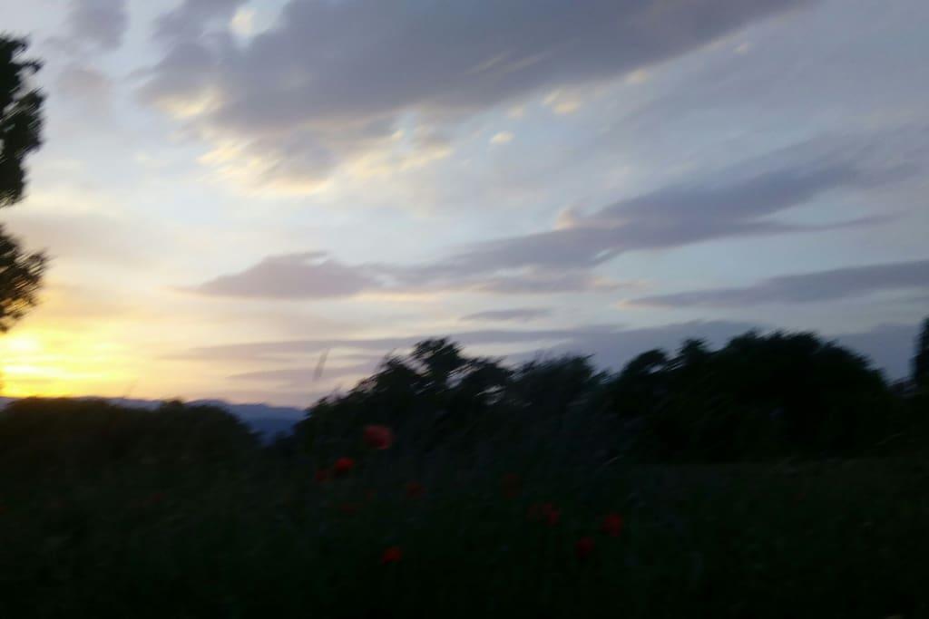 Couché de soleil à la campagne