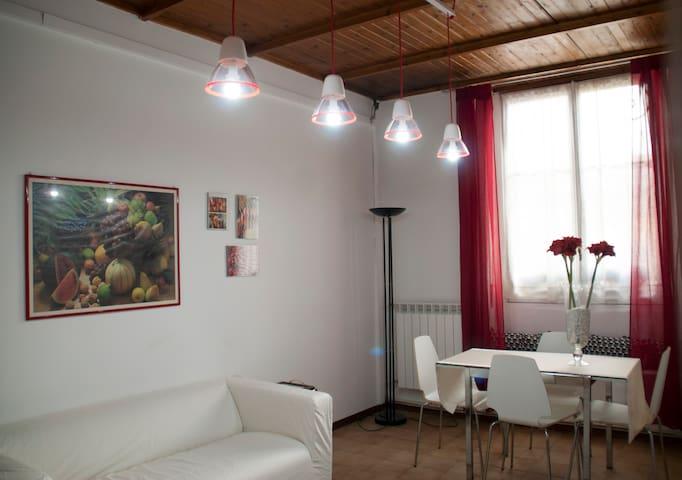Grazioso appartamento a pochi minuti dal centro - Torino - Flat