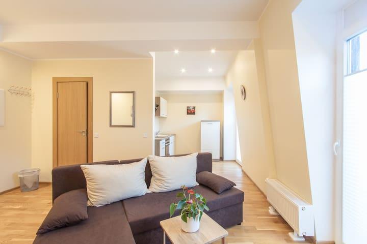 Park Villa Apartments 12,small groups-send request - Bad Kissingen - Betjent leilighet