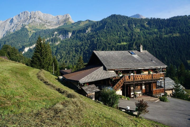 Authentic chalet experience with stunning views