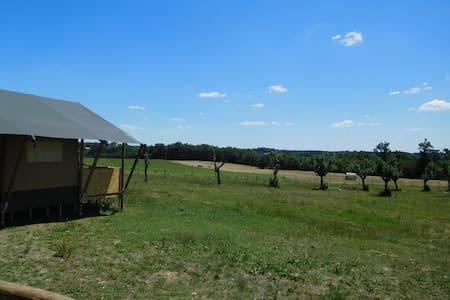 Tente Safari de 25m2 - Duras