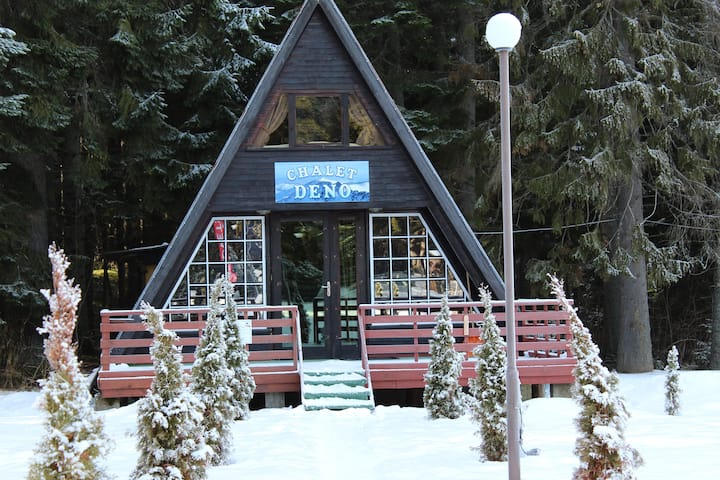 Ski Chalet Deno