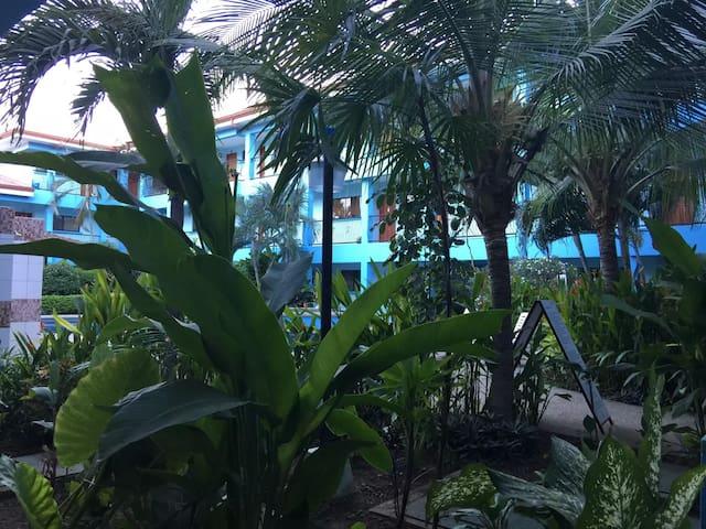 Сoсo fine rest. beach.2 min.big pool.studio Wifi - Coco - House