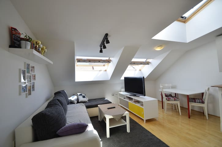 Loft app in a new house near centre (free parking)