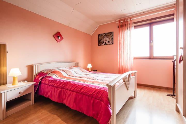 GITE DU RHIN en  ALSACE  - Rhinau - Appartamento
