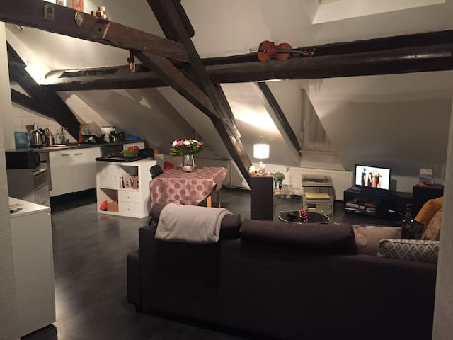 Superbe apt en centre ville de Sarreguemines - Sarreguemines - Appartement