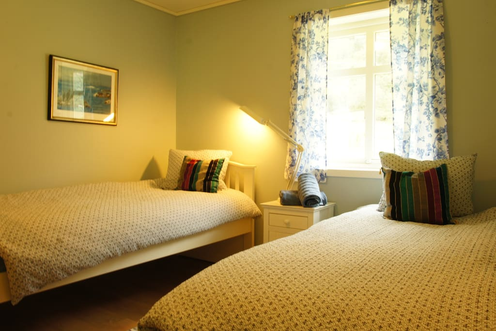 Blue room (twin-2 beds)