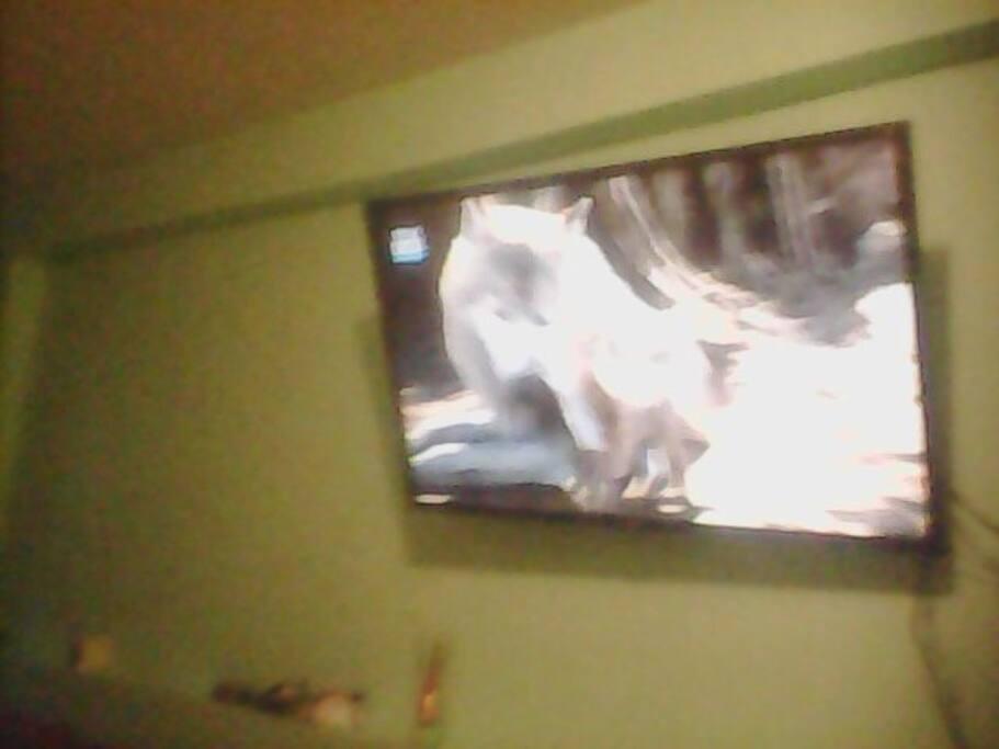 TV smart TV 47'' TV a cabo sky completa