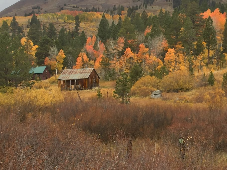 Fall Colors in Hope Valley - just 30 minutes from our home!