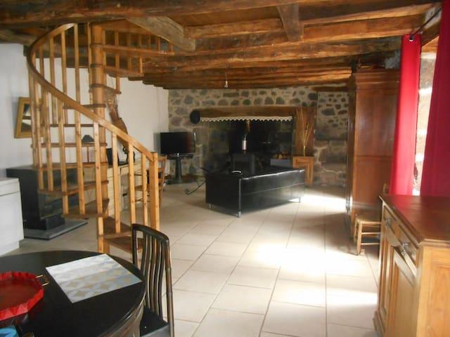Maison à Fontanges cité medièvale proche de Salers - Saint-Martin-Valmeroux - Dům