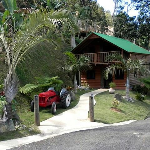 Rustic Log Cabins w/Pool Sleeps1-12 - Orocovis - Rumah