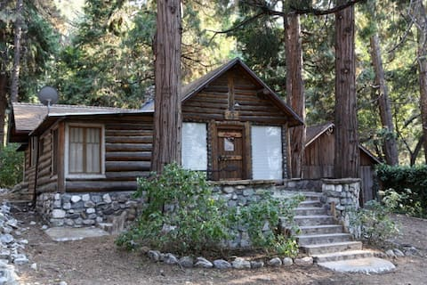 CabINN of the Falls, Authentic 1930's Log Cabin
