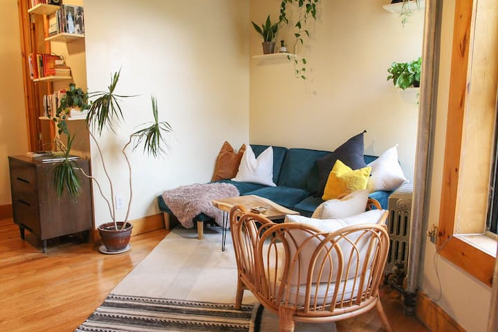 Cute, Clean and Cozy in Crown Heights!