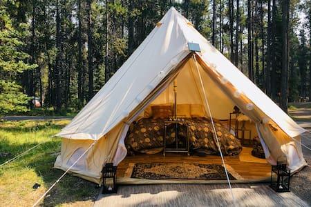 Golden Nights- Luxury Tent in Banff Region