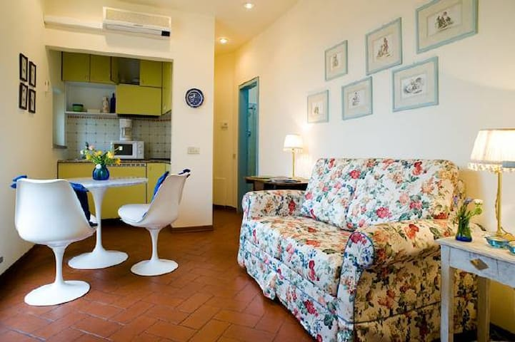 Small kitchenette and a sofa bed