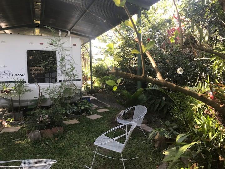 Armadillo Shelter & garden. En El Valle de Anton