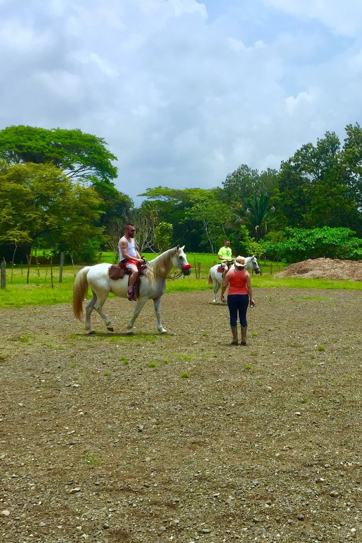 Riding lesson in arena