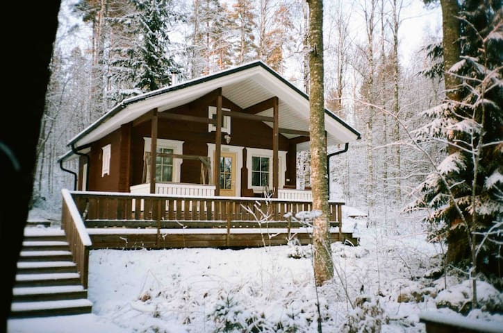 Cozy cottage Saukko with sauna on the lake shore