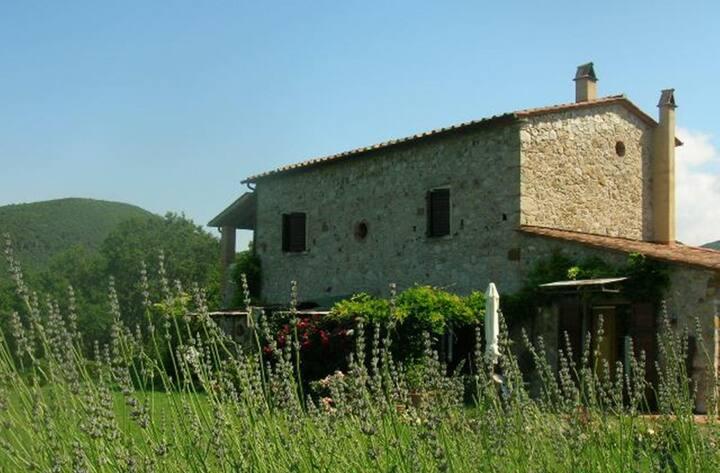 Cheap Holiday in Tuscany Farmhouse!