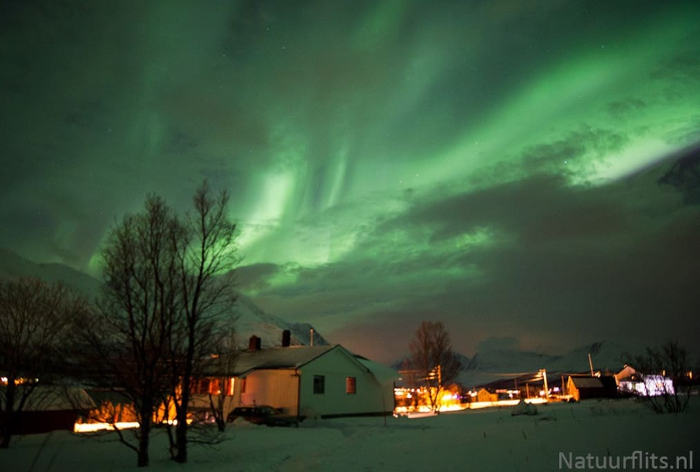 The house bathing in the northern lights.