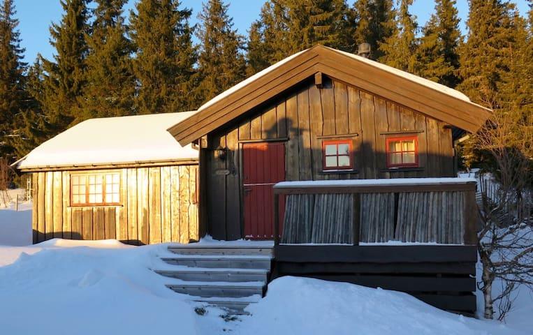 Koselig familiehytte på Musdalsætra - Tretten - Cabin