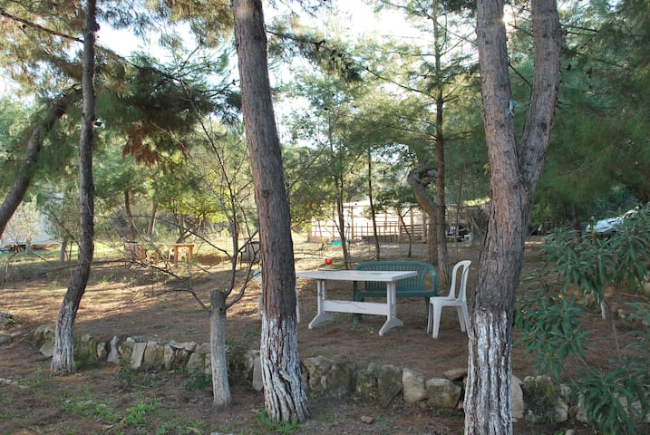 İzmir Forest and Sea Stay