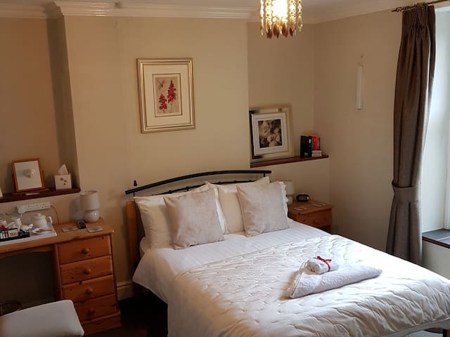 Double Room at Bronwye Guest House