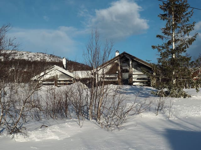 Spacious cabin - modern tradition - Hol - Hytte