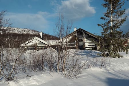 Spacious cabin - Nordic cool style - Hol