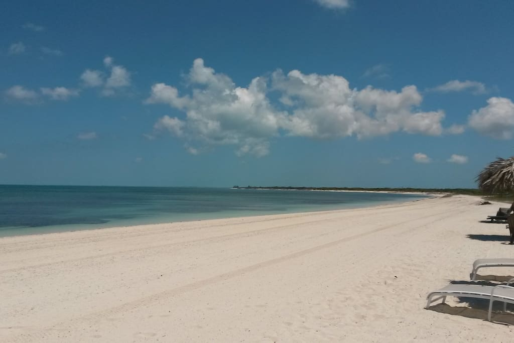 Miles of untouched beach, never crowded