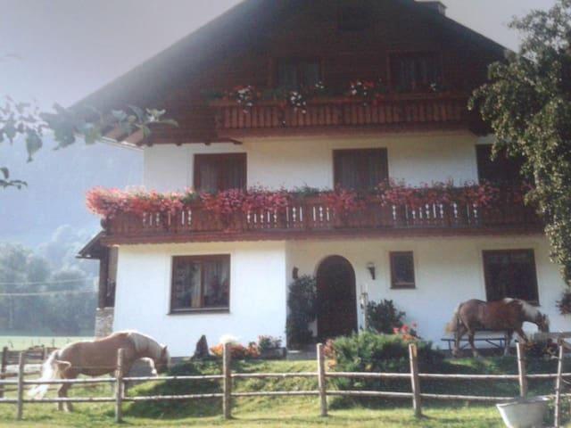 Organic farm stay in Styria. - Liezen - Szoba reggelivel