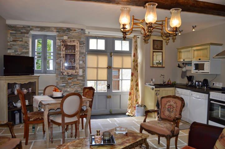 Villa Moncoeur - Le Blanc - Apartamento