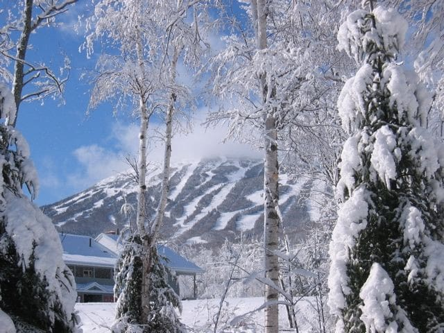 Sugarloaf USA Resort Lift Accessible Condo - Carrabassett Valley - Selveierleilighet