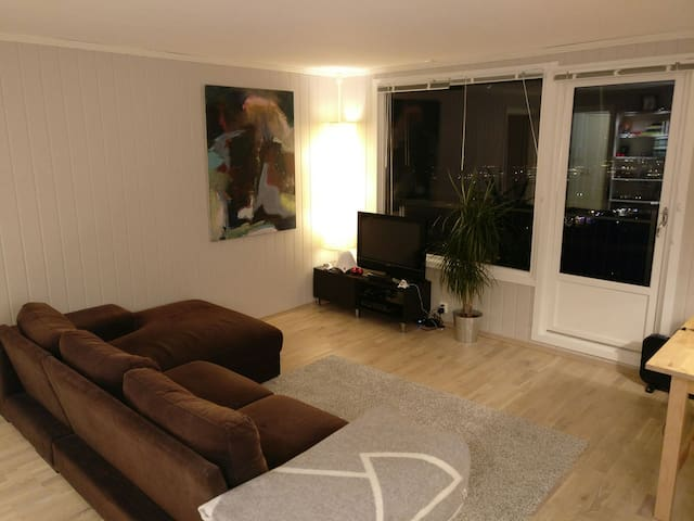 Cosy flat close to Oslo - Tårnåsen - Appartamento