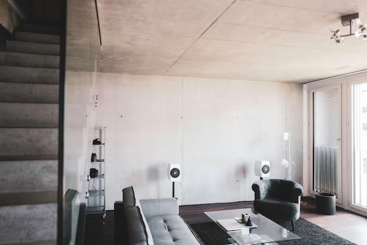 Luxury 2-Storey Zurich Loft